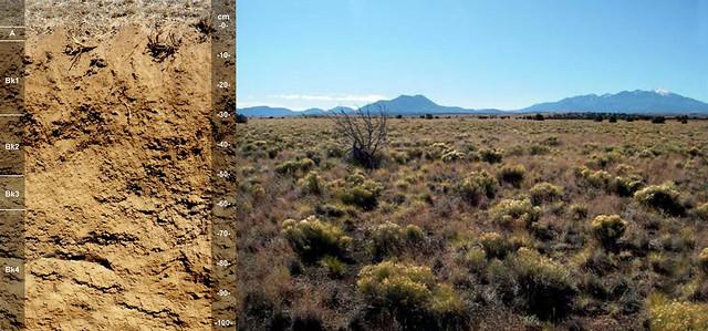 Bighawk soll series and landscape AZ
