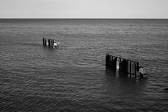 Facing towards the shore