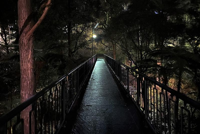 Footbridge at night