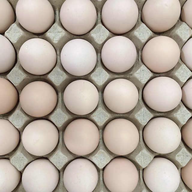 Buy fresh kampung egg online