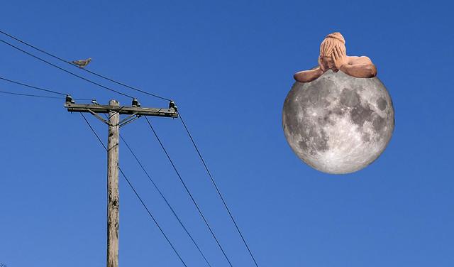 Moon Stuck