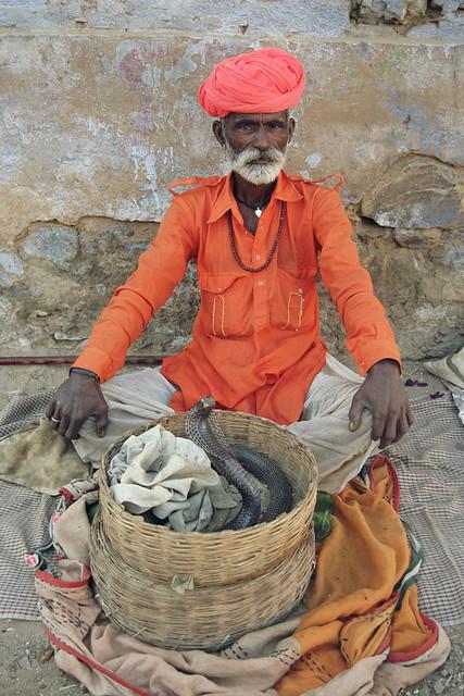 Snake charmer, Pushkar, Rajasthan, India