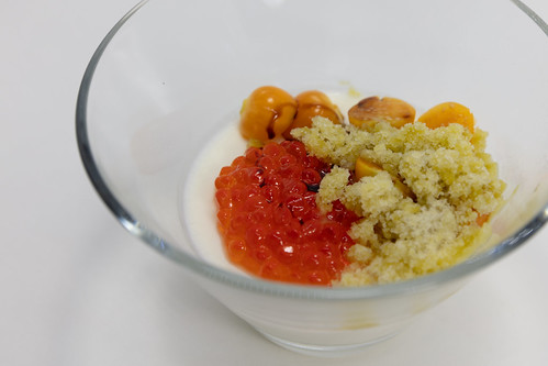Tomatillo Panna Cotta (Manresa)
