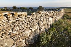 Murar på Stora Gåsemora