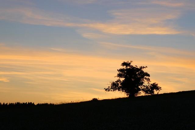 Sarratt Sunset