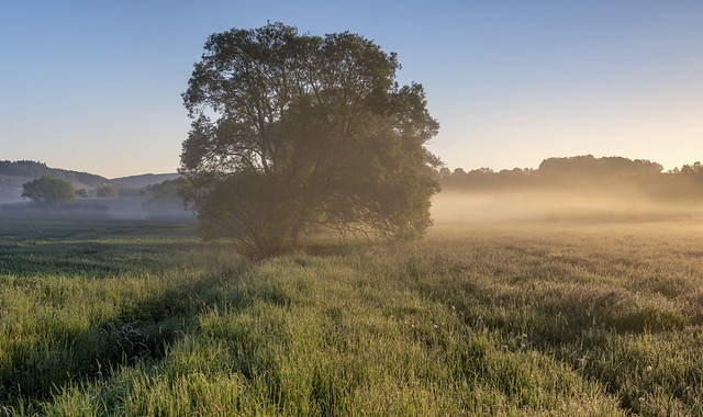 *lifting of fog*