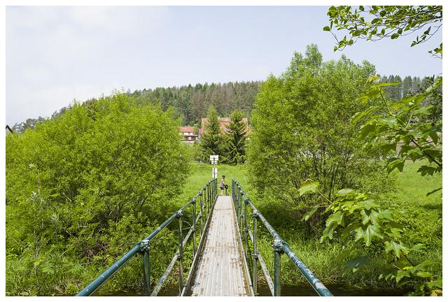 Bei Königshütte (Elbingerode)