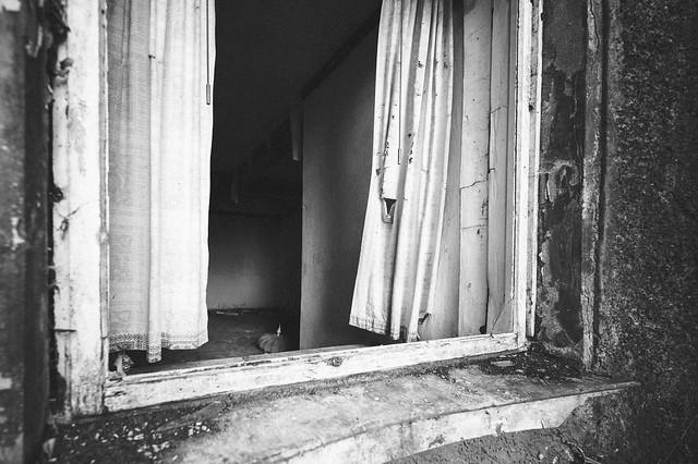 haunted (11)