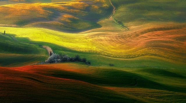 Sea of colors