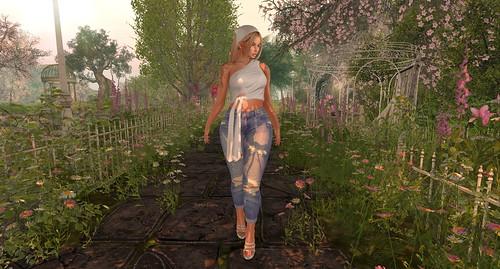 Summer In Bloom