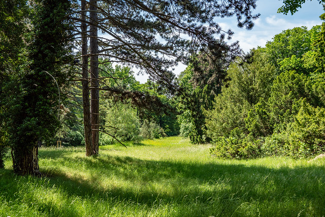 Potsdam, Park Sanssouci: Nordischer Garten unterhalb der Krim-Lindenallee - Nordic Garden below the Crimean linden allée