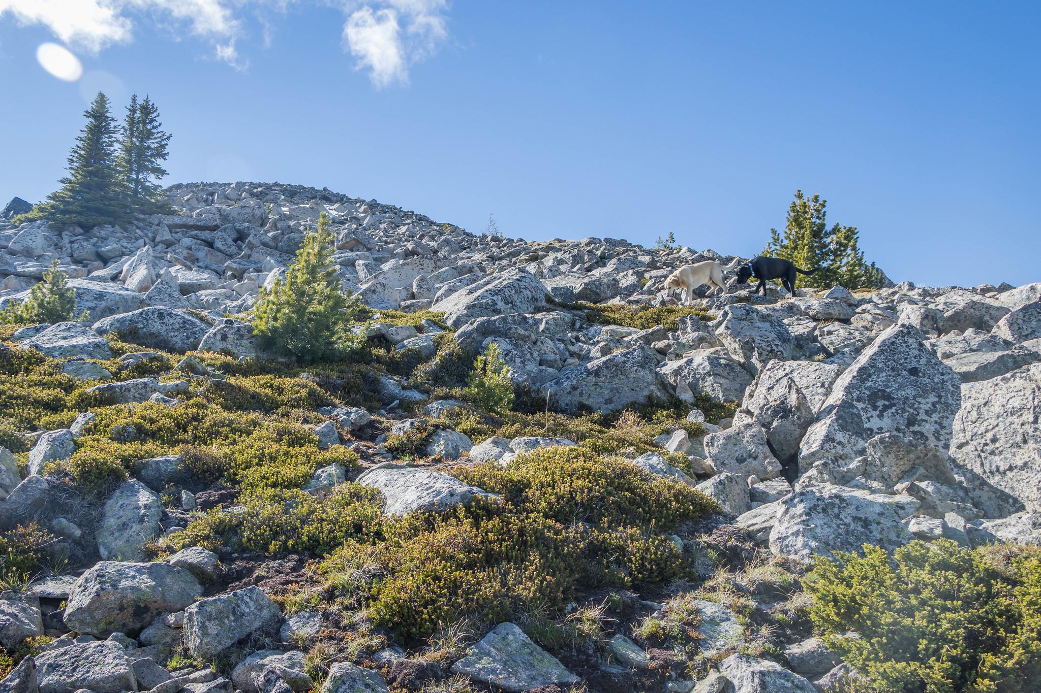 Final scramble on Snowshoe Mountain