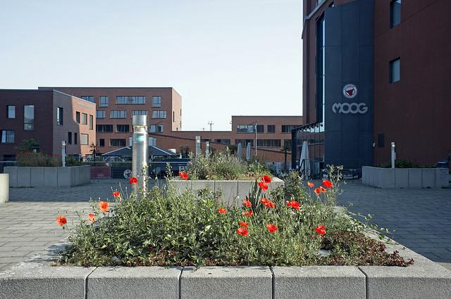Emil-Moog-Platz
