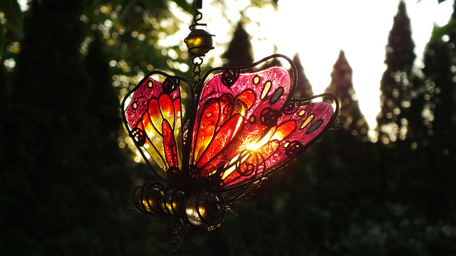 Glass butterfly at sunset