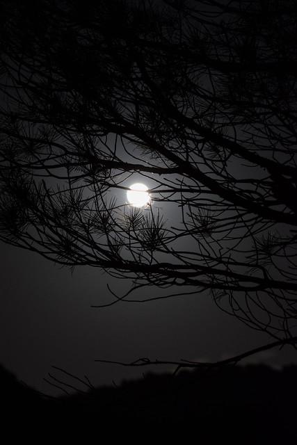 Super Luna 26/05/2021