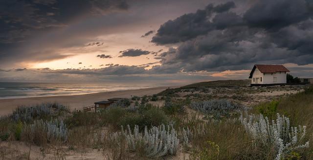 Sur la dune