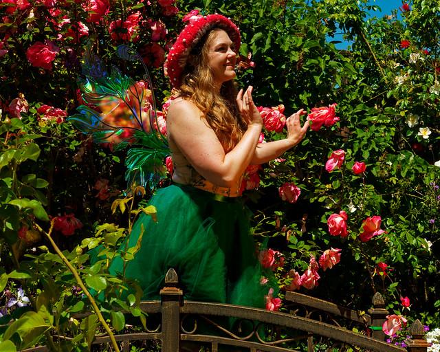 Still more magical garden photos to post!
