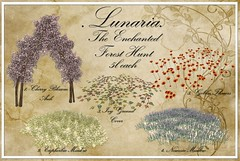 Enchanted Forest Hunt!