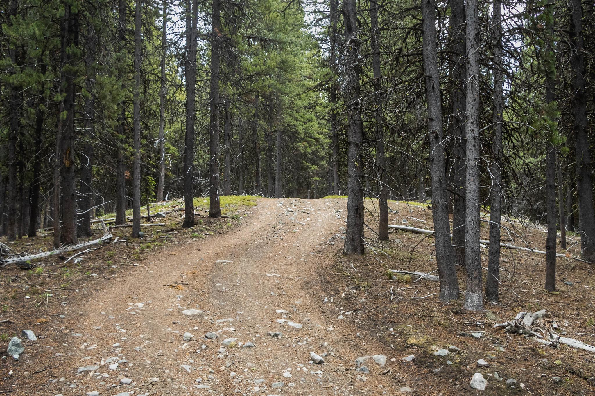 This way to Chopaka Mountain