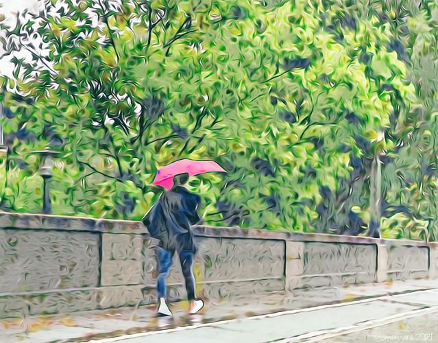 A Wet Walk to Work