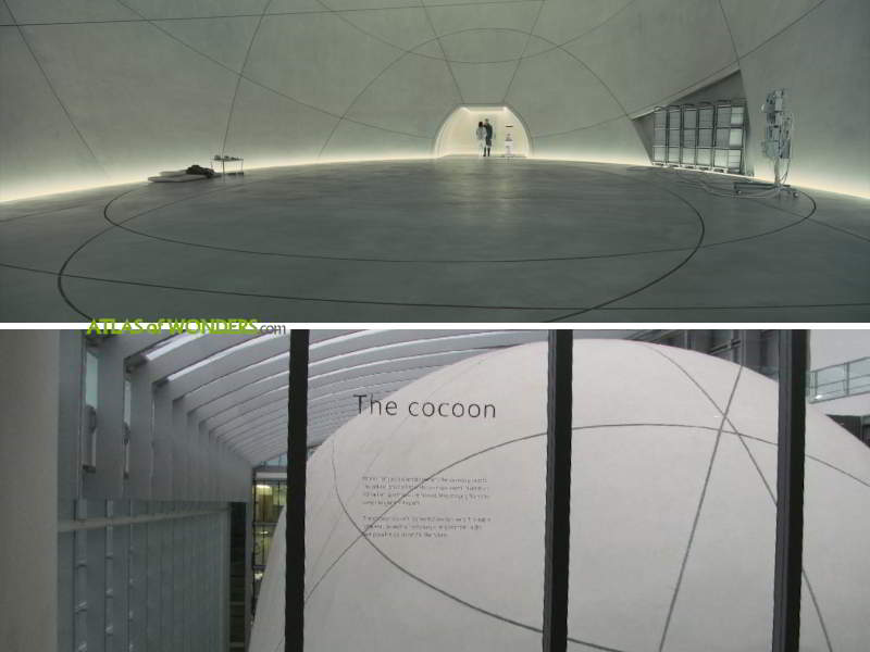 Cocoon Natural History Museum London