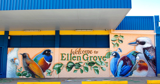 BNE Local and Liveable - Ellen Grove