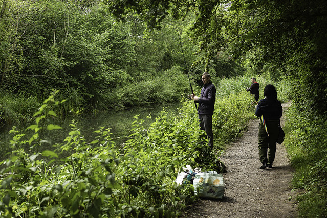 Fishing the Basingstoke Canal