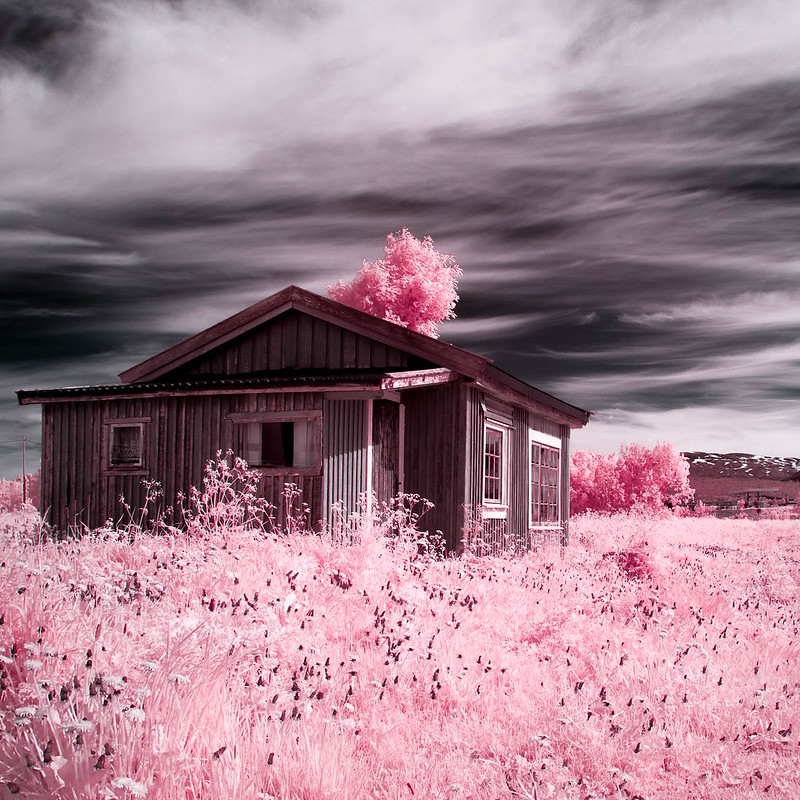 Infrared of the day 23
