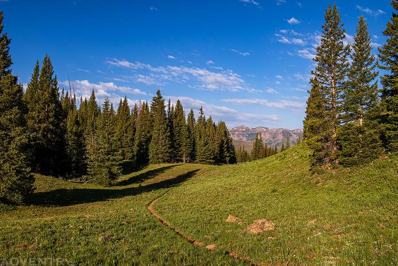 McGinnis Lake Trail