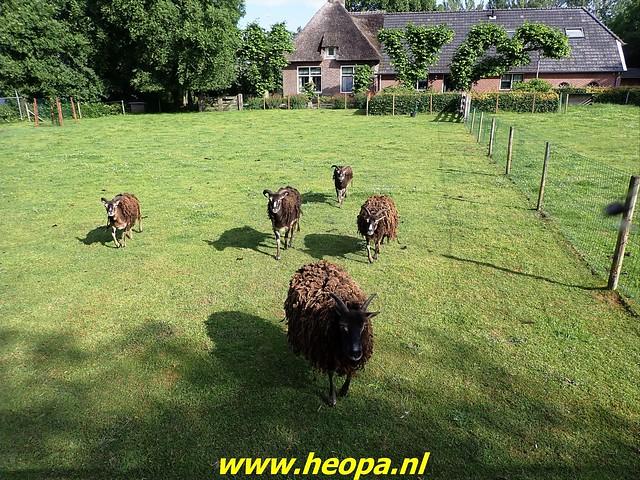 2021-06-22     Zwolle - Meppel    (43)