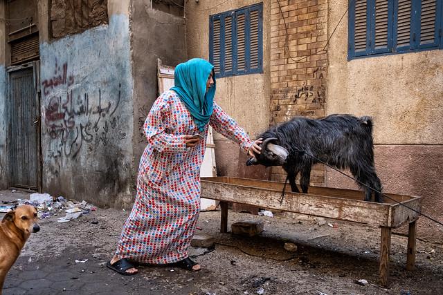 El-Darb El-Ahmar neighborhood, Cairo