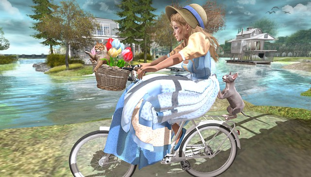Nothing compares to the simple pleasure of a bike ride!