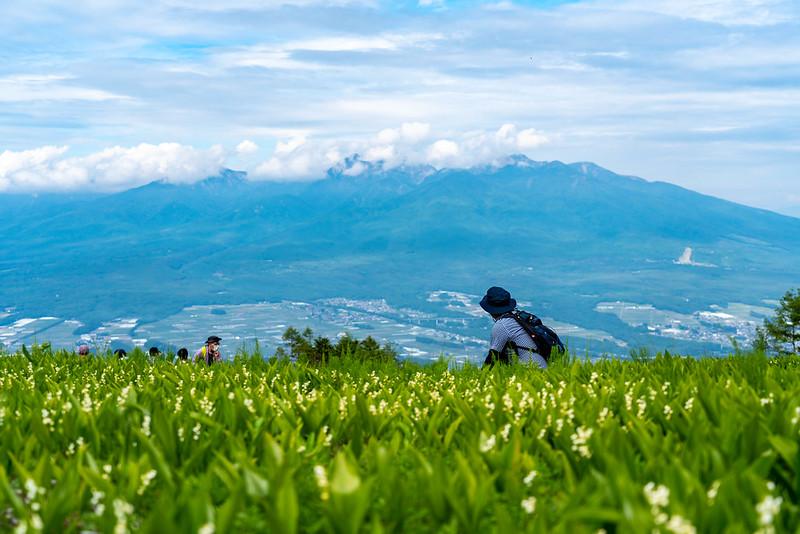 入笠山から見える八ヶ岳