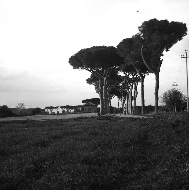 @Parco degli Acquedotti
