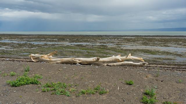 Plage, beach, Ile aux Coudres, PQ, Canada - 06726