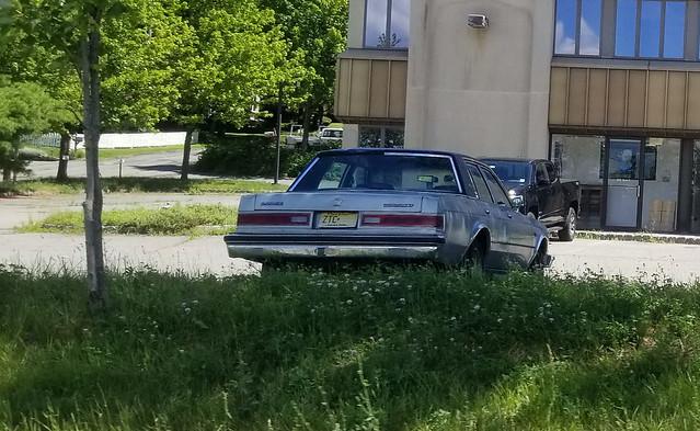 1986 Dodge Diplomat SE