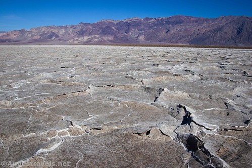 Strange leather-like crust on part of Badwater Flats, Death Valley National Park, California