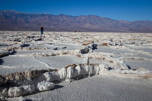 """The ridges you get to step over.  This one is probably about 8-10"""" tall.  Badwater Flats, Death Valley National Park, California"""