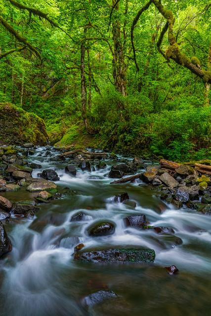 Lower Bridalveil Falls Stream