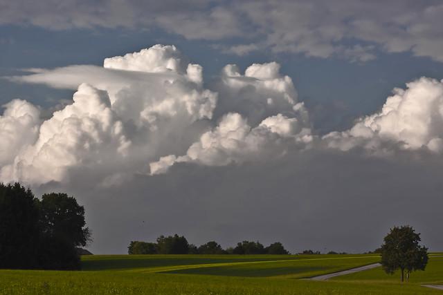 Landscape near Giebing - Germany (5928)