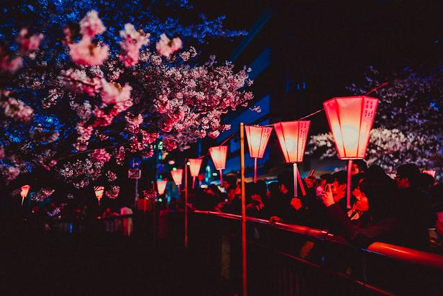 Tokyo Japan Travel Photography