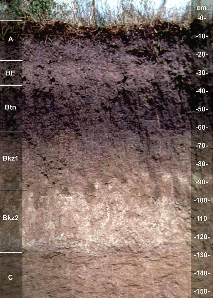 Aberdeen soil series SD