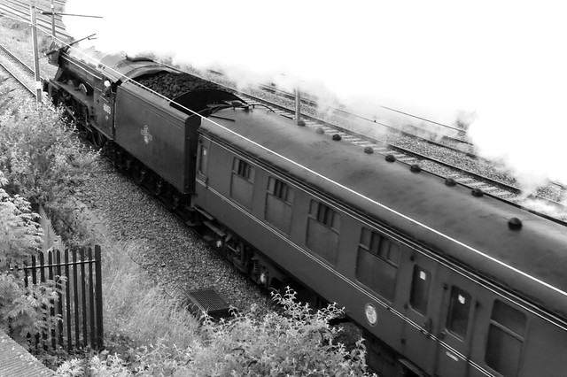 60103 Flying Scotsman at Oakleigh Park with 'The White Rose'