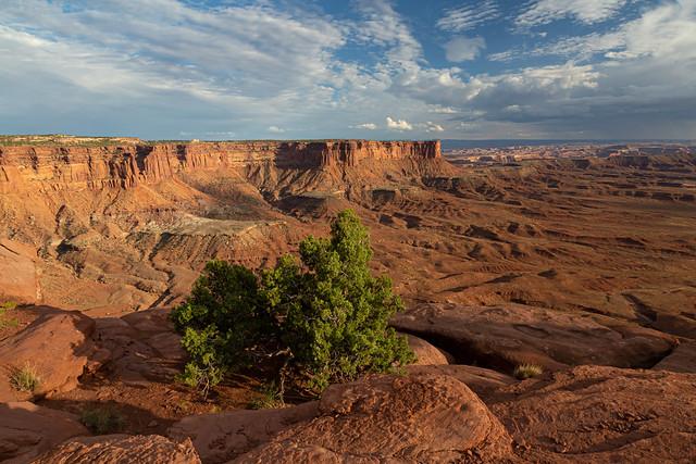 Canyonlands National Park Beauty
