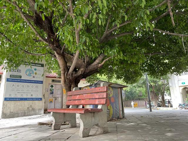 City Hangout - Bench by the Tree, Shivaji Bus Terminus6301