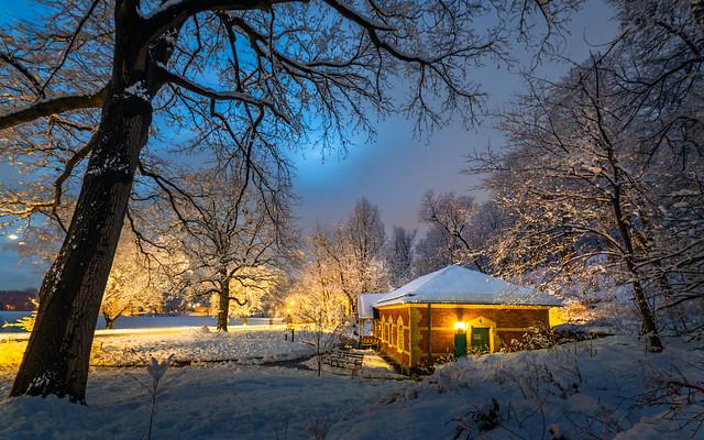 Winter night 冬夜