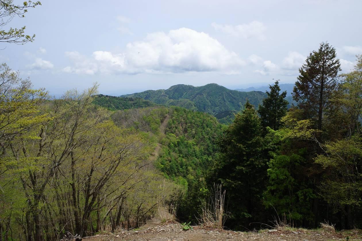 奥多摩・蕎麦粒山から眺める川苔山