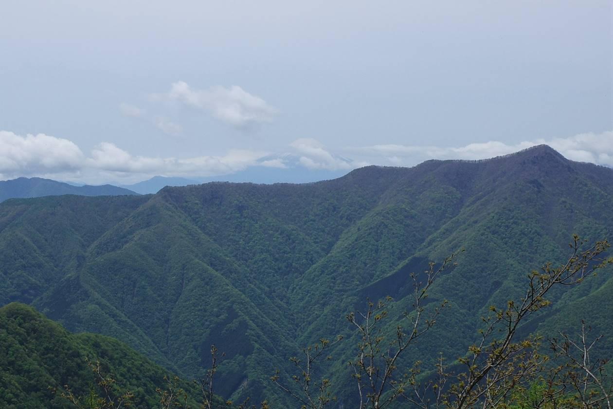 奥多摩・天目山山頂からの富士山
