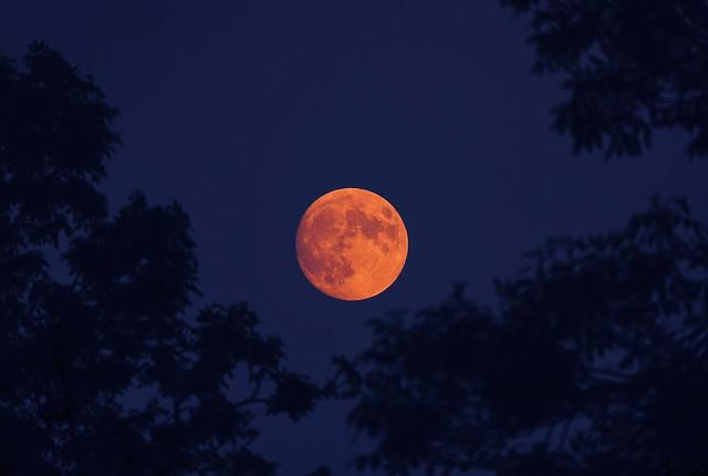 Strawberry moon - 23 June 2021