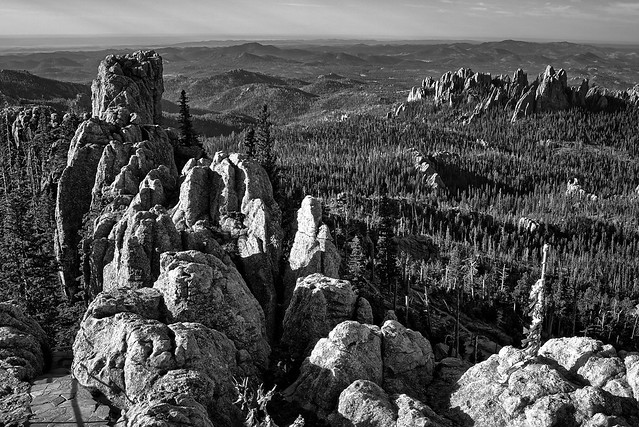 View from Black Elk Peak